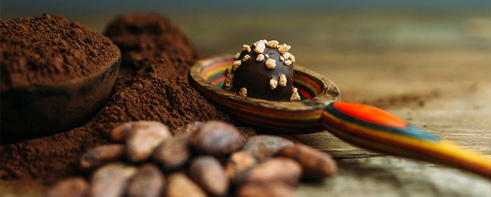 סיור במפעל שוקולד